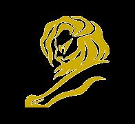 Cannes - 1 Leão de Ouro