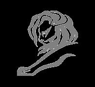 Cannes - 2 Leões de Prata